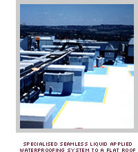 Specialised Seamles Liquid Applied Waterproofing System to a Flat Roof
